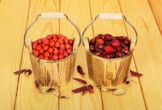 Ведра заполнили с ягодами плода шиповника и рябины на светлой древесине Стоковое Фото