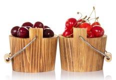 Ведра с красными и розовыми сладостными cherrys Стоковые Фотографии RF