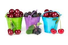 3 ведра с ягодами Стоковые Фото