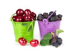2 ведра с ягодами Стоковые Фотографии RF