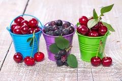 3 ведра ягод Стоковая Фотография