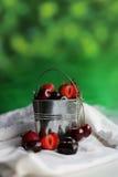 Ведро с ягодами Стоковое Изображение RF