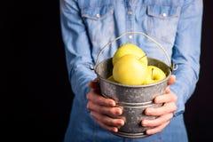 ведро яблок в руках Стоковые Фотографии RF