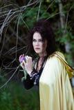 Ведьма в хламиде золота Стоковое Изображение RF