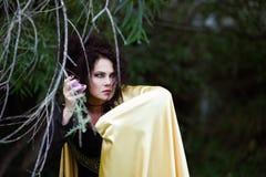 Ведьма в хламиде золота Стоковое Фото