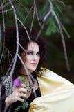 Ведьма в хламиде золота Стоковая Фотография