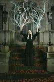Ведьма грома стоковое изображение rf