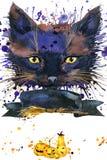 Ведьма кота хеллоуина предпосылка иллюстрации акварели иллюстрация вектора