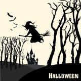 Ведьма на венике в празднике хеллоуина Стоковые Фотографии RF