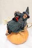 Ведьма с черным котом на тыкве Стоковые Фото