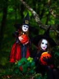2 ведьмы в лесе, концепция хеллоуина Стоковые Изображения RF