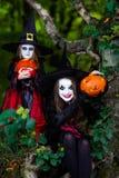 2 ведьмы в лесе, концепция хеллоуина Стоковые Изображения