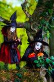 2 ведьмы в лесе, концепция хеллоуина Стоковое Изображение