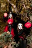 2 ведьмы в лесе, концепция хеллоуина Стоковое фото RF