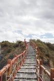 Взбираться шаги Стоковое Изображение RF