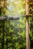 Взбираясь лес или веревочка паркуют с смертной казнью через повешение покрышки на веревочках на природе Стоковое Фото