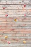 Взбираясь стена в парке Деятельность при внешнего спорта Стоковые Фотографии RF