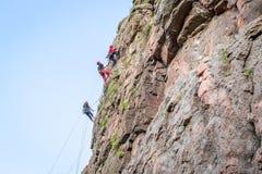 взбираясь утес узлов ropes 2 Группа в составе молодые альпинисты утеса взбирается вертикальный утес гранита весьма спорт Стоковое Изображение RF