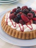 взбитая губка flan ягоды cream Стоковая Фотография RF