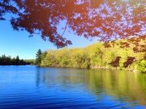 Взгляды весны озера парка штата пруда заусенца стоковые фотографии rf