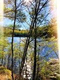 Взгляды весны озера парка штата пруда заусенца стоковое фото