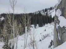 Взгляды зимы величественные вокруг гор Уосата передних скалистых, лыжного курорта Брайтона, близко к озеру сол и долине Heber, Pa стоковые фото