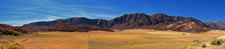 Взгляды ландшафта каньона ясенелистного клена, популярно известные как каньон сардины, к северу от города Brigham внутри западные стоковое изображение rf