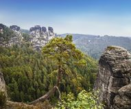 Взгляды национального парка Saxon Швейцарии Bastei стоковое изображение