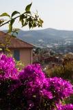 Взгляды от балкона в южной Франции стоковые фото