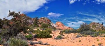 Взгляды от более низкого следа бухты песка к образованию вортекса, парком штата каньона снега в консервации Ar красных скал нацио стоковое изображение