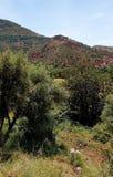 Взгляды от гористого ландшафта стоковое изображение rf