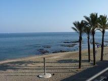 Взгляды пляжа в Испании с пальмами Стоковые Фото