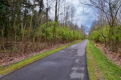 Взгляды природы и троп вдоль Greenway дн Shelby и естественных следов frontage Рекы Cumberland зоны, hardw bottomland стоковое изображение rf