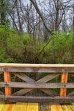 Взгляды природы и троп вдоль Greenway дн Shelby и естественных следов frontage Рекы Cumberland зоны, hardw bottomland стоковые фотографии rf