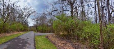 Взгляды природы и троп вдоль Greenway дн Shelby и естественных следов frontage Рекы Cumberland зоны, hardw bottomland стоковые изображения