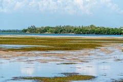 Взгляды Tampa Bay воды стоковое фото