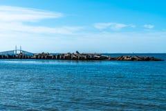 Взгляды Tampa Bay воды стоковые фотографии rf