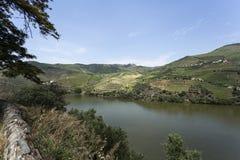 Взгляд †реки Дуэро «панорамный стоковое изображение rf