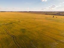 взгляд аграрных полей от высот в России стоковое изображение rf