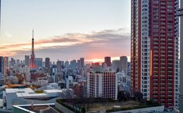 Взгляд башни токио на заходе солнца утра стоковое изображение rf