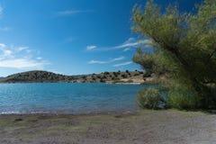 Взгляд бечевника озера Билл Эванс стоковая фотография rf
