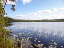 Взгляд большого озера, окруженный со всех сторон лесом, от высоты холма Стоковое Фото