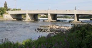 Взгляд вдоль грандиозного реки в Кембридже, Канаде 4K акции видеоматериалы
