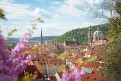 Взгляд весны к городу Праги стоковое фото rf