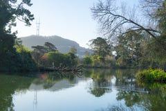 Взгляд весны озера Stow в утре стоковое фото rf