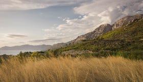 Взгляд взморья панорамной дороги стоковая фотография rf