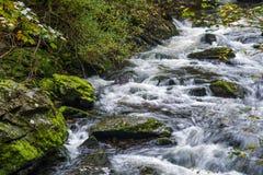 Взгляд восточного реки Lyn Стоковая Фотография RF