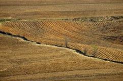 Взгляд вспаханного поля стоковое изображение