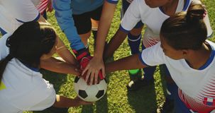 Взгляд высокого угла женской футбольной команды сжимая руки 4k видеоматериал