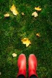 Взгляд высокого угла женщины в красных резиновых ботинках на зеленой траве вполне листьев осени Стоковые Фотографии RF